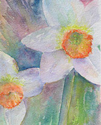 daffodils - sue bradley